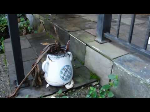 Foundation water damage
