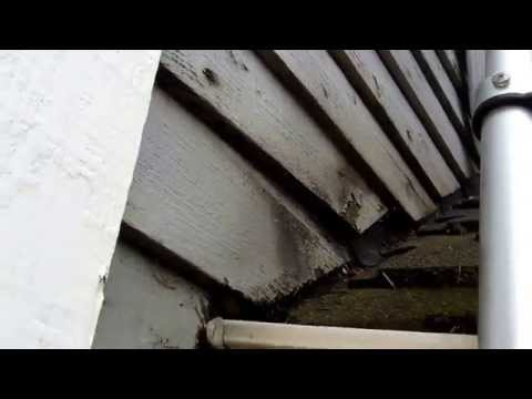 Lack of gutter flashing