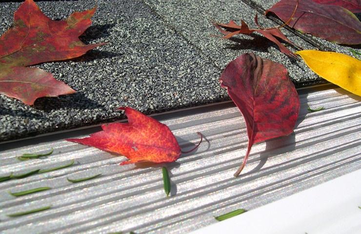 Leaf filter Seattle