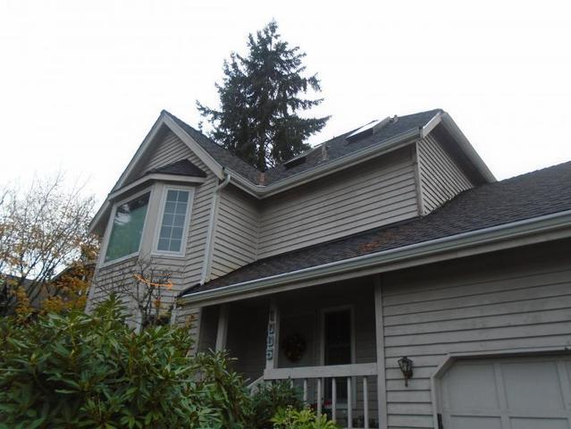 Keep Unwanted Visitors Off Your Roof - Image 1