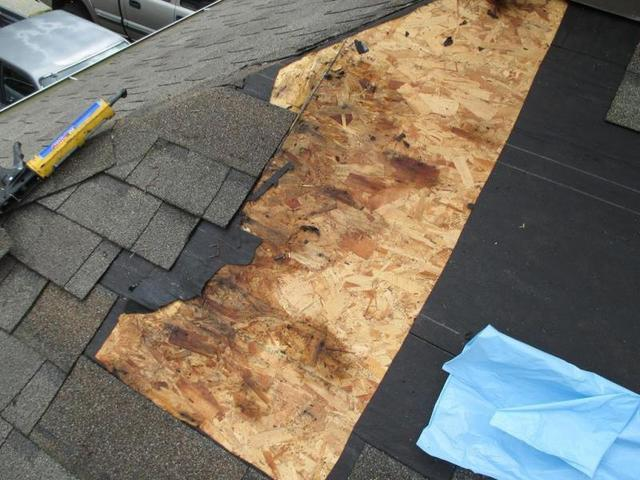 Keep Unwanted Visitors Off Your Roof - Image 2